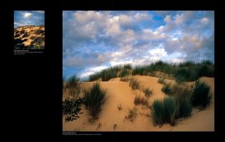 Book Sandy Lunitz Algarve 2012 - Retrospective page-22